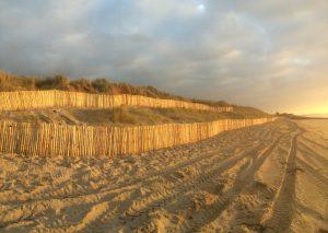 Aménagement d'un plan de préservation d'espace dunaire en Normandie